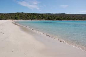 antropoti-wedding_planner-beach-sakarun-long-island-wedding-venus