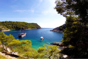 antropoti-wedding_planner-island-solta-wedding-venus